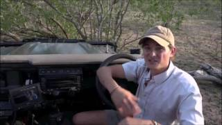 Download Safari Live : Christopher tells us a scary encounter story Nov 03, 2016 Video