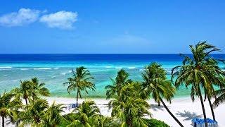Download Coconut Court Beach Hotel, Christ Church, Caribbean Islands, Barbados, 3-star hotel Video