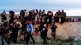 Download World Humanitarian Day 2016 – One Humanity Video