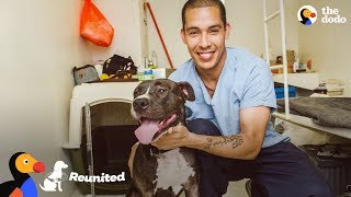 Download Dog Surprise Reunion with Prisoner Who Saved His Life | The Dodo REUNITED Video