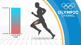 Download The Wearable Device That Avoids Injuries Through Technology | The Tech Races Video