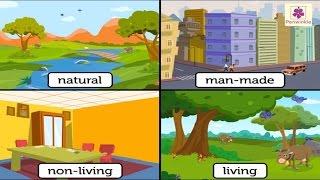 Download Natural And Man Made Things | Environmental Studies For Kids | Grade 3 | Vid #1 Video