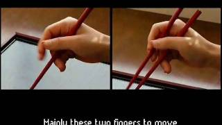 Download The Answer Book: Guide to mastering the chopsticks within 5 minutes (How to hold chopsticks) Video