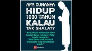 Download Gambar DP BBM Kata Kata Bijak ″Islam″ Video
