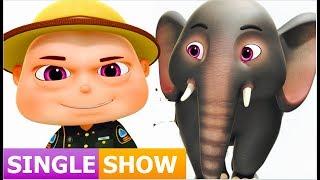 Download Zool Babies Rescue Elephant ( Single Episode ) Zool Babies Series | Videogyan Kids Shows Video