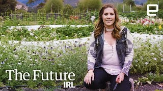 Download The farming robots of tomorrow are here today | The Future IRL Video