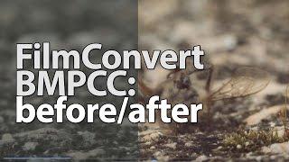 Download FILMCONVERT - BMPCC - ProRes Video