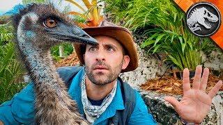 Download Jurassic World Explorers: RAPTOR TRAINING DAY! | Jurassic World Video