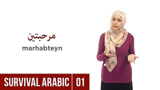 Download Survival Arabic: Lesson 01 - Greetings Video