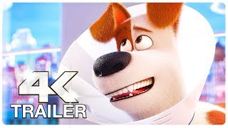 Download SECRET LIFE OF PETS 2 : 12 Minute Clips + Trailers (4K ULTRA HD) NEW 2019 Video