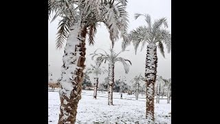 Download First Ever Recorded Snow in Kuwait & Saudi Arabia Deep Snow/Hail | Mini Ice Age 2015-2035 (127) Video