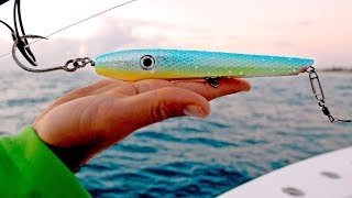 Download Fishing for Sharks with Topwater Lures, Live Bait and Float Rigs - 4K Video
