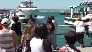 Download Whale Watching Boat Crashing Into San Diego Dock Video