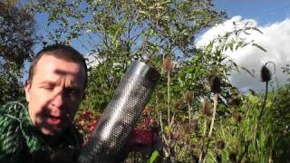 Download How to attract goldfinches. Alex Sally nyjer feeder top tip (wales england) hd Video