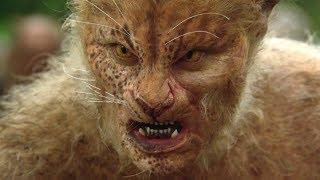 Download 男子为野兽注入人类基因,创造出兽人社会,当起了上帝!速看科幻电影《拦截人魔岛》 Video