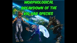Download The Kig Yar (Jackal) Explained | Pirates, Snipers, Skirmishers, and shield wielders | Halo CE-5 Lore Video