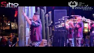 Download Banda Tierra de Venados - Presentación - Angel de la Independencia Video
