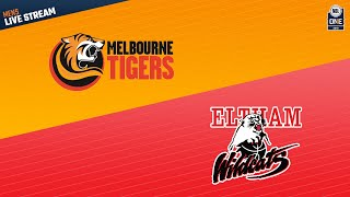 Download NBL1 Men Round 15   Melbourne vs Eltham Video
