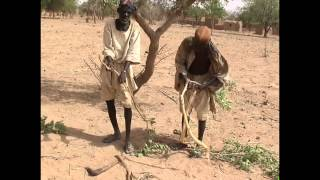 Download Smelting Iron in Africa (A DEMONSTRATION) Video
