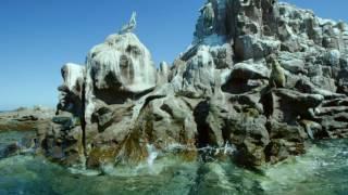 Download Restless Shores Video