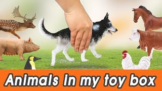 Download [EN] #59 Cute Animals in my toy box! kids education, Dinosaurs animationㅣCoCosToy Video