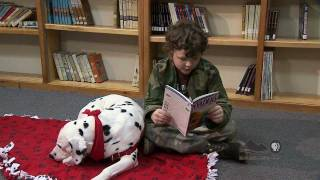 Download Spotlight - Therapy Dog for Reading Video