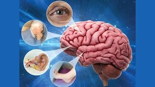 Download Dizziness and Vertigo - Research on Aging Video