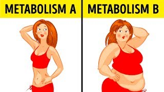 Download What theMetabolic Diet Isand Why ItWorks for Anyone Video