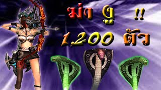 Download [Xshot] ปราบงู 1,200 ตัว (เซิร์ฟจีน) Video