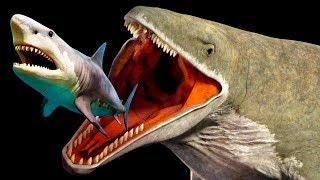 Download Criaturas de la fosa de las Marianas que son más espantosas que el Megalodon Video
