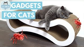 Download 12 Amazing Gadgets For Cats Video
