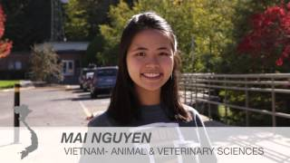 Download International Students- University of Idaho Video