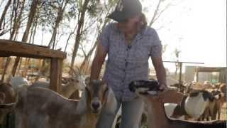 Download California's Small Farms: Soledad Goat Farm Video