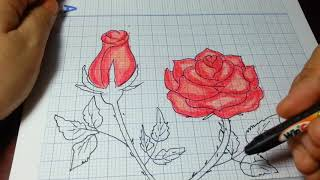 Download VẼ HOA HỒNG ĐƠN GIẢN NHẤT/How to Draw a Rose (and add color) Super EASY Realistic Video