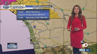Download Angelica's Forecast Video