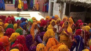Download rajasthani geet by ladies and dance Video