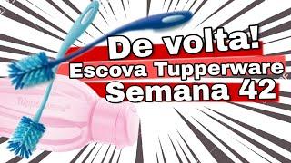 Download DE VOLTA! ESCOVA PARA LAVAR ECO TUPPERWARE - SEMANA 42 Video