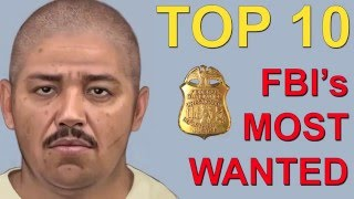 Download Top 10 America's Most Wanted by the FBI Video