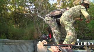 Download 1,000 Pound Louisiana Gator Video