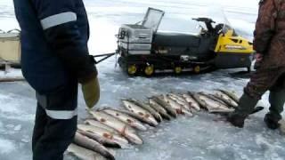 Download Рыбалка на Печоре 1 Video