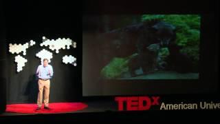 Download Confessions of a Wildlife Filmmaker   Chris Palmer   TEDxAmericanUniversity Video