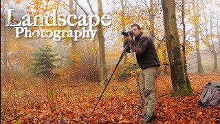 Download LANDSCAPE PHOTOGRAPHY in Denmark - Behind the scenes | Last chance for photographing the autumn Video
