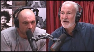 Download Joe Rogan & Peter Schiff on Minimum Wage Video