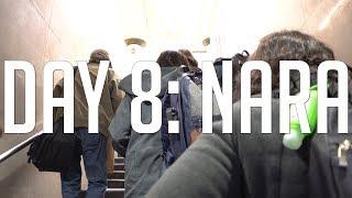Download Japan Day 8: Nara Park Video