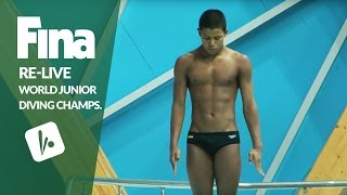 Download Re-Live - Day 4 Final - FINA World Junior Diving Championships 2016 - Kazan (RUS) Video