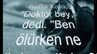 Download Fon Müziği [ Gerçek Bir Hikaye ] Video
