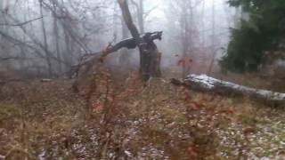 Download Hexenwald in Braunschweig - gruselige Klopfgeräuche - Geister oder natürliches Phänomen? Video