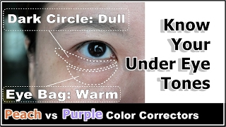 Download How To Reduce Puffy Under Eye Bags & Dark Circles w/ Color Correcting Concealers Video