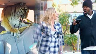 Download TIGER DESTROY'S CAR PRANK!!! | Prank Academy Video