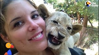 Download Woman Horrified to Find She Was Raising Lions To Be Killed at 'Sanctuary' | The Dodo Video